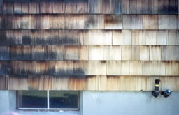 Cedar shingles - before and after power washing.